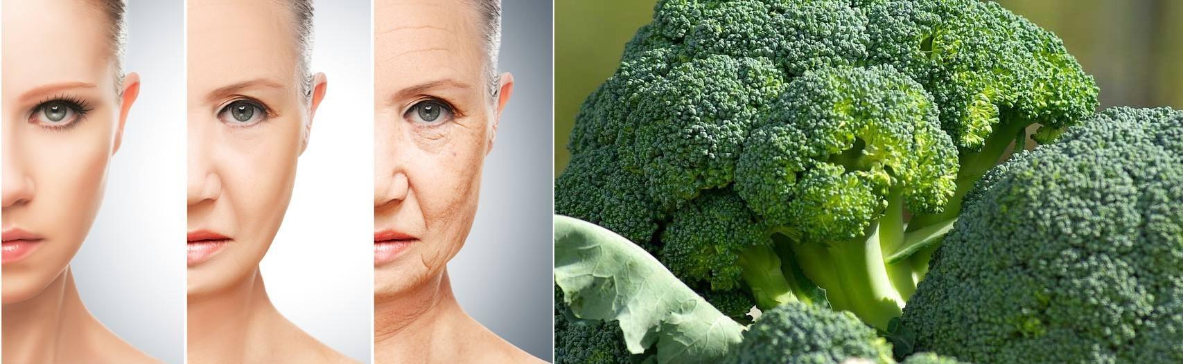 البروكلي يساعد على إبطاء عملية الشيخوخة