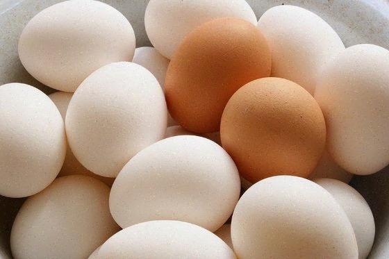 البيض وصحة العين