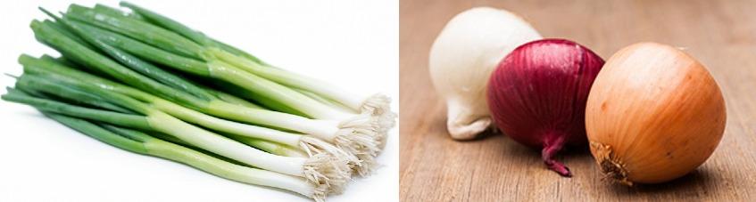 تحسين صحة الفم من فوائد البصل الغريبة