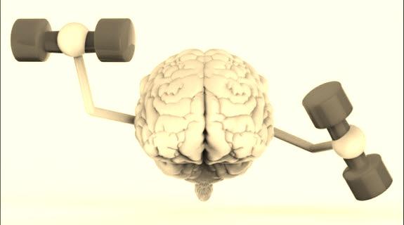 فوائد البروكلي للمخ