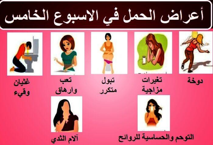 اعراض الحمل في الاسبوع الخامس