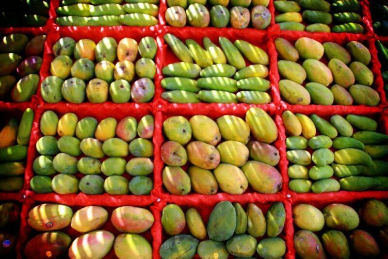 القيمة الغذائية للمانجو - فوائد المانجو الصحية