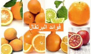 فوائد البرتقال والفيتامينات التى يحتويها للجهاز المناعي