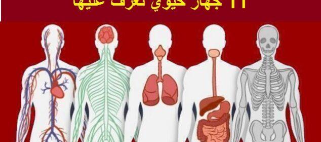 أجهزة جسم الإنسان